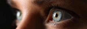 Vier-Augen-Prinzip bei Bohmann Übersetzungen